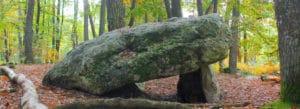 Pierre procureuse forêt perche belleme