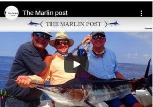 The marlin post vidéo Moulin de gémages