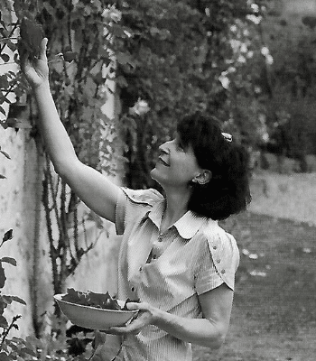 Anna Iannaccone récolte fruits